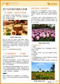 广州旅游攻略预览2
