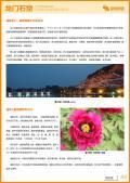 龙门石窟旅游攻略预览3