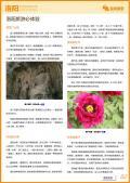 洛阳旅游攻略预览2