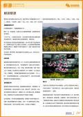婺源旅游攻略预览4