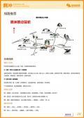 腾冲旅游攻略预览4